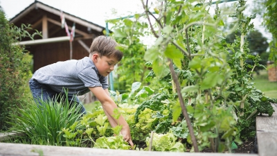 Teaching the Concept of Equity Through Gardening